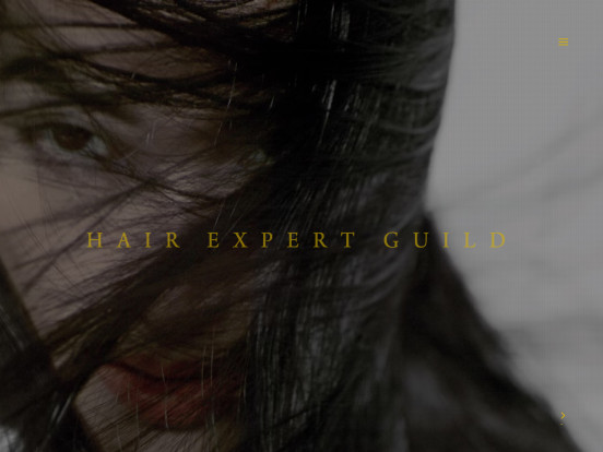 "Hair Expert Guild – Going beyond ""HAIR"" expression."