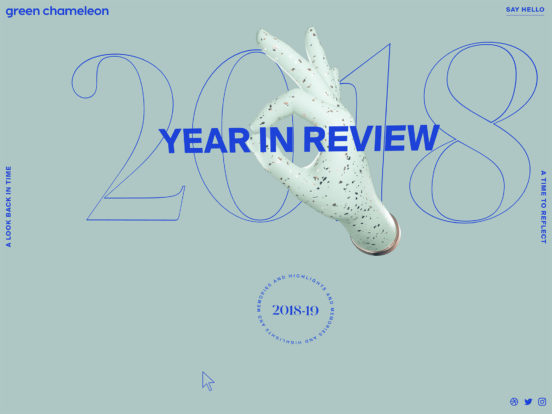 2018 – A Year In Review from Green Chameleon